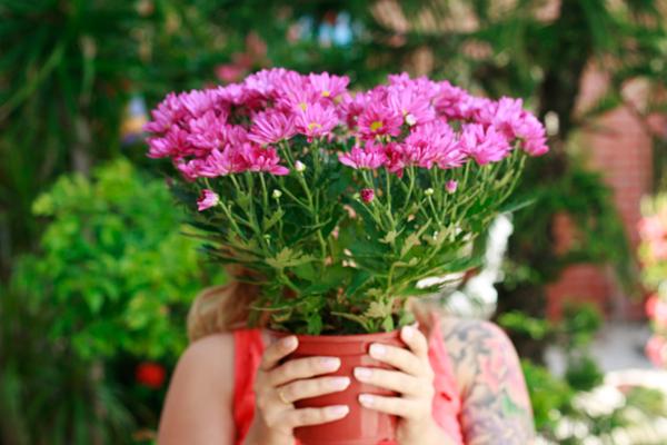 edna.flores